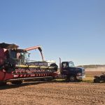 Combine alongside grain truck during harvest